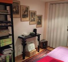 Apartment Svetlana 1