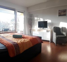 Modern City Apartment with balcony and nice parc view 2