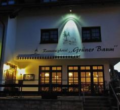 Rennsteighotel Grüner Baum 1