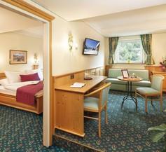 Hotel Alpina 1