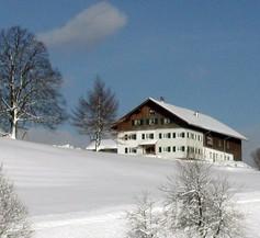 Lindenhof 2