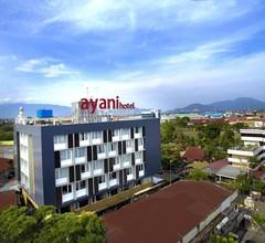 Ayani Hotel 2