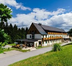 Waldhotel Vogtland 1
