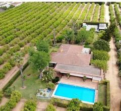 Landhaus mit Pool- in Orangenhainen- 25 km vom Zentrum von Sevilla Entfernt 1