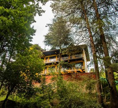 The Hosteller Kasol 1