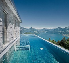 Hotel Villa Honegg 2