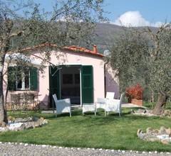 Casa vacanze gli ulivi 2