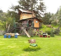 Cabaña en La Calera 2