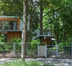 Urban Tree House 1