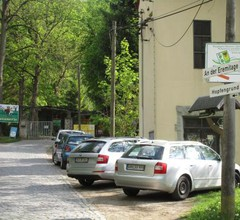 Waldblick 2