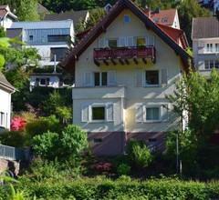 Nichtraucherferienwohnung-Neckarblick 2