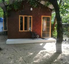 Coconut Garden 2