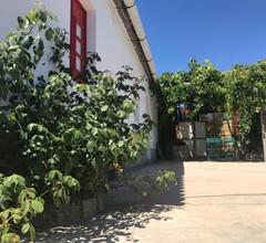 Casa da Nave 2