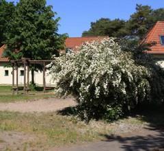 Jugenddorf Wittow 1