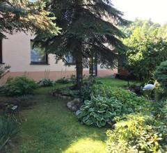 Hostel DREWLAND 2