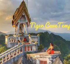 Tiger Cave Home 1