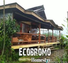 Ecobromo 2
