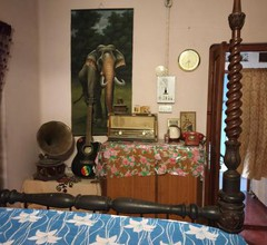 Kolkata Backpackers Bed & Breakfast 2