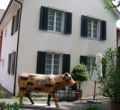 Studio-Apartments by Ochsen Lenzburg 2
