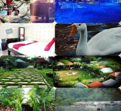 Coorg Adventures Tent Stay AND SPA 1