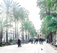 Barcelona Playa (Badalona) 2