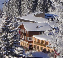 Hotel Restaurant Alpina 2