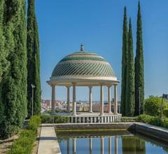 Málaga Ficus 2