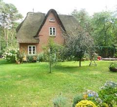 Reetdachhaus Isemann 2