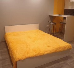 Bright Apartment in the Very Center of Novosibirsk 1