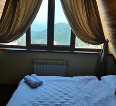 Alpine Castle 2