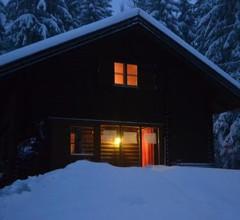 Ferienhütte Hochalm 2