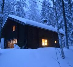 Ferienhütte Hochalm 1