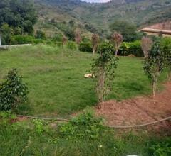 Kaju Farms 2