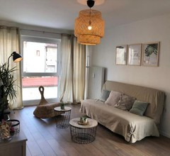 Furnished apartment close to Basel 1