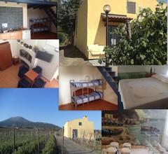Vesuvio Inn Guest House e Wine Experience 1