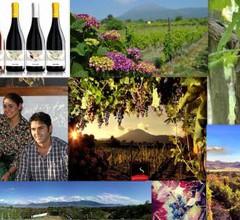 Vesuvio Inn Guest House e Wine Experience 2