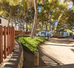 Las Palmeras Camping & Bungalow 2