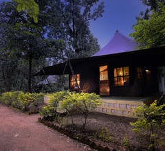 Pench Jungle Camp 1