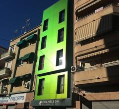 Chameleon Hostel 1