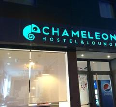 Chameleon Hostel Alicante 2
