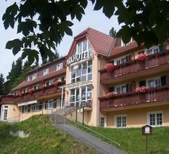 Parkhotel Bad Brambach 2