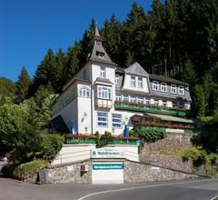Flair Hotel Waldfrieden 2