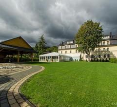Hotel Alpin 1