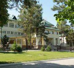 Borvikha Hotel & Spa 1