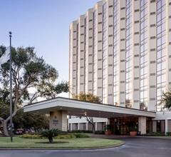 Hilton Houston Galleria Area 2