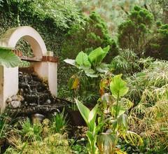 Villas Sol y Luna Coyoacan 2