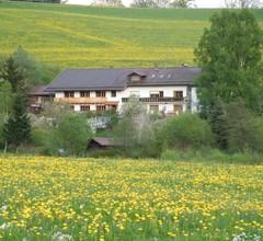Pension Landhaus Riedelstein 2