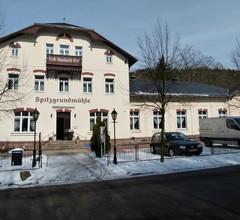 Historische Spitzgrundmühle 1