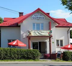Gorsko Hotel Wieliczka 1