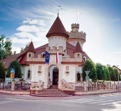 Zamek Pod Brzozami 1